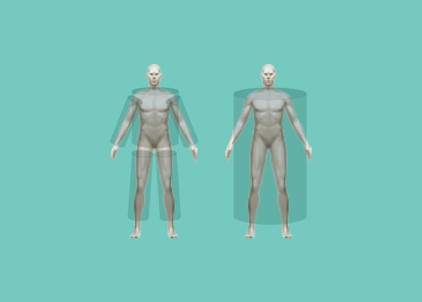 Your Body and You: A Guide to Segmental Analysis